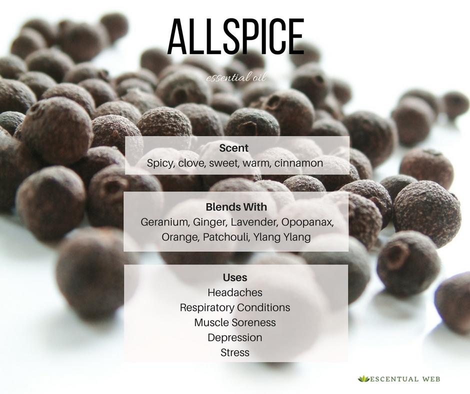 Allspice Essential Oil Pimenta Officinalis Escentual Web