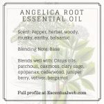 angelica root oil profile