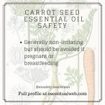 carrot seed essential oil safety