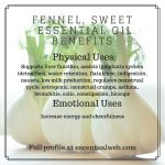 Sweet Fennel Essential Oil Profile