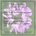 Geranium essential oil profile