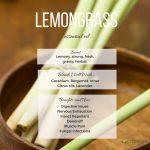 Lemongrass essential oil profile