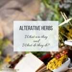 Alterative Herbs: What are they and what do they do?