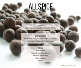 Allspice Essential Oil (Pimenta officinalis)