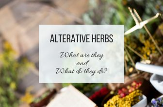 What are Alterative Herbs and What do they Do?