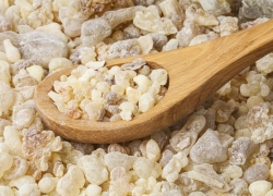Frankincense (Boswellia carteri) Essential Oil