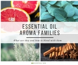 8 Essential Oil Aroma Families