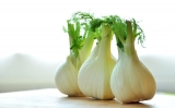 Fennel, Sweet (Foeniculum vulgare) Essential Oil