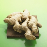 Ginger (Zingiber officinale)