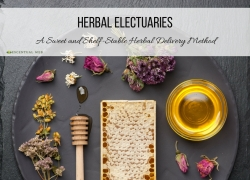 The Electuary: A Sweet and Shelf-Stable Herbal Delivery Method