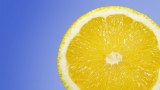 Lemon Essential Oil (Citrus limon)
