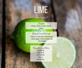 Lime Essential Oil (Citrus x aurantifolia)