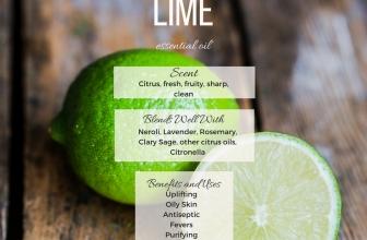 Lime Essential Oil (Citrus x aurantifolia)